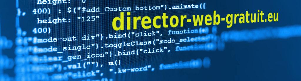Director web Agency